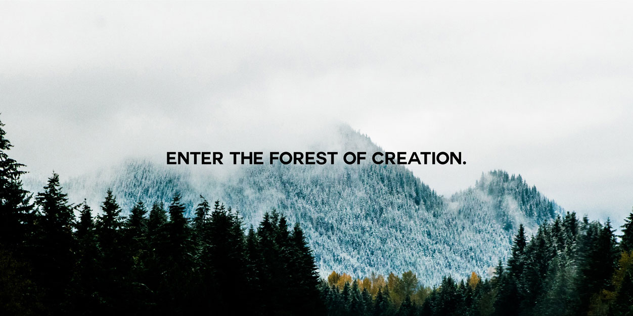 Forest of creation